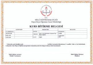 meb onaylı hijyen eğitimi belgesi